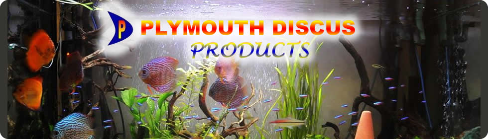 1. Plymouth Discus